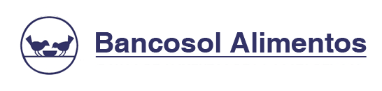 bancosol-logo-cabecera-web